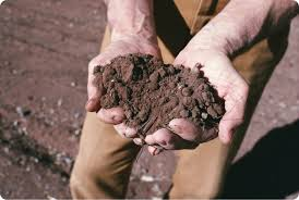 C'è l'amore per la nostra terra e poi c'è l'Imu per i terreni agricoli…
