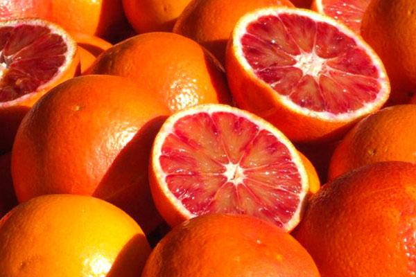Dopo olio, fragole, pomodoro e riso, oggi le arance: l'agricoltura europea sacrificata sull'altare degli scambi internazionali